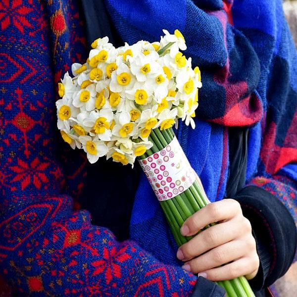 دسته-گل-نرگس زیبا
