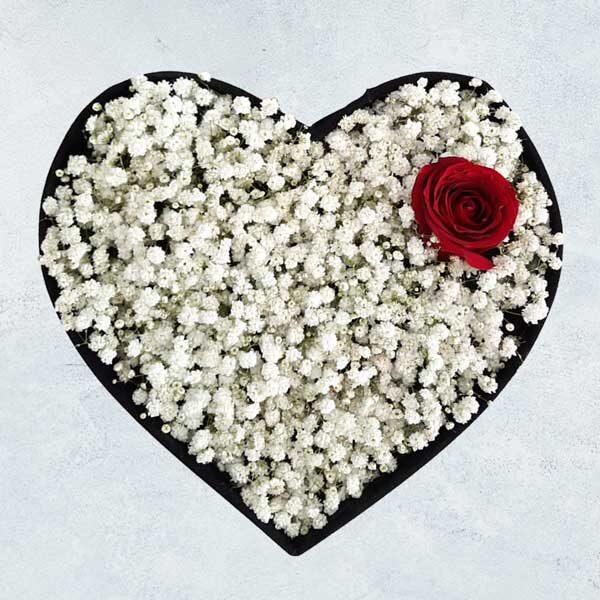 باکس گل رز و ژیپسوفیلا