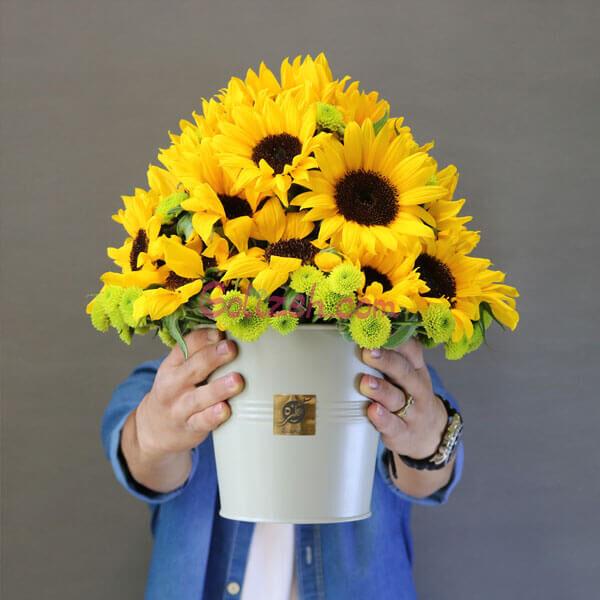 باکس گل آفتابگردان و داودی 1